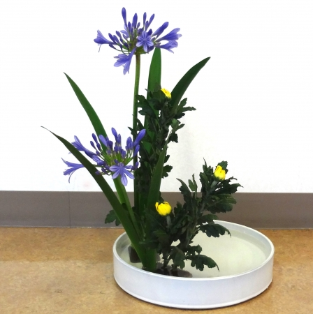 DSC01301-盛り花140630