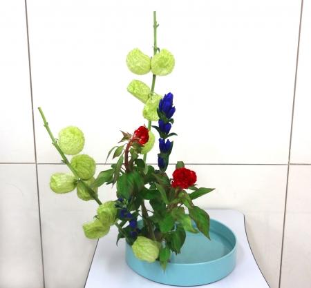 DSC01324-盛り花140901