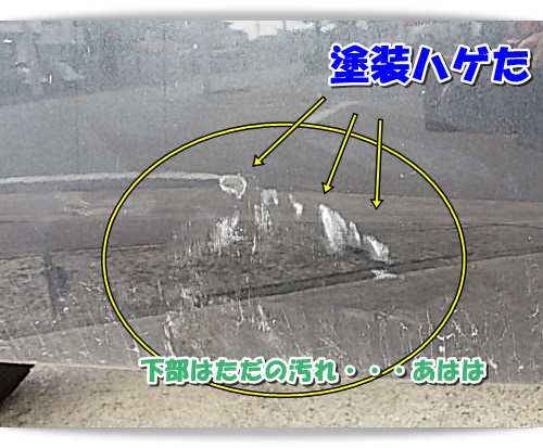 DSCN7493.jpg