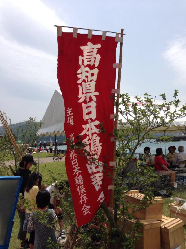 20140503日本鶏保存会01