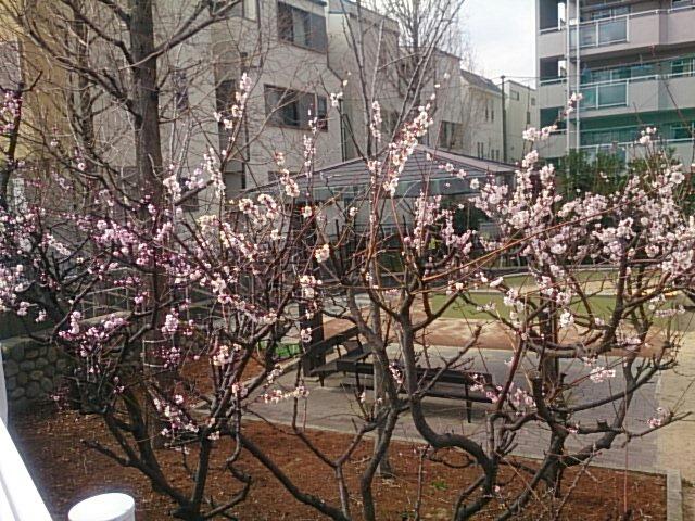 fc2_2014-03-15_20-24-56-126.jpg