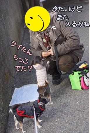 DSC07599.jpg