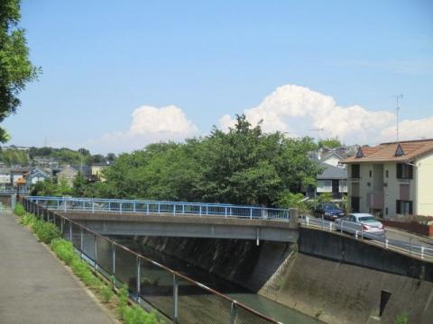 水道道n21