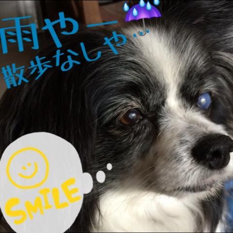fc2blog_20140606183520c11.jpg
