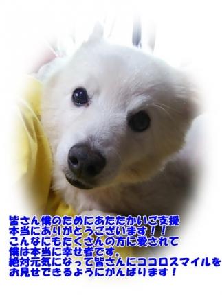 DSC_1120.jpg