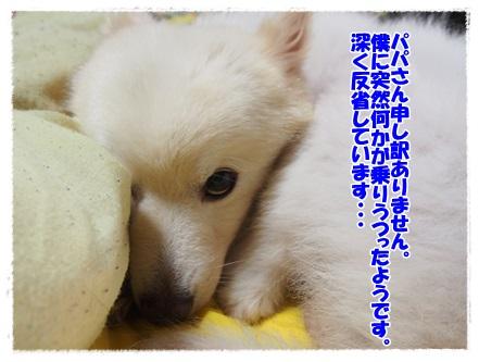 P7240066.jpg