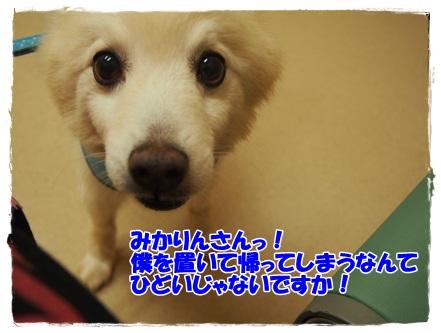 P8040046.jpg
