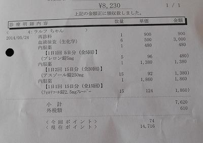 2014-05-24-07.jpg