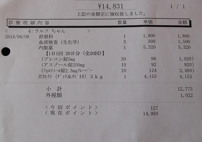 2014-06-08-05.jpg