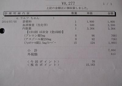 2014-07-05-06.jpg