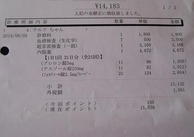 2014-08-03-09.jpg