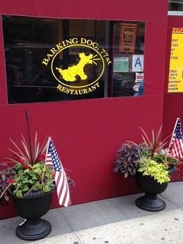 dog cafe1
