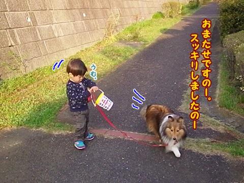 IMGP3432.jpg