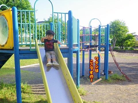 IMGP4351.jpg