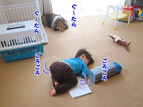 IMG_0377.jpg