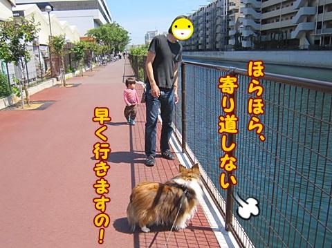 IMG_2075.jpg