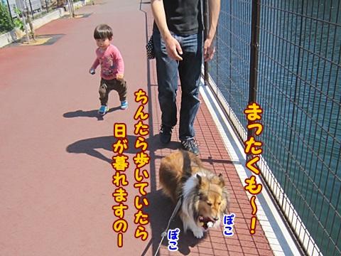 IMG_2076.jpg