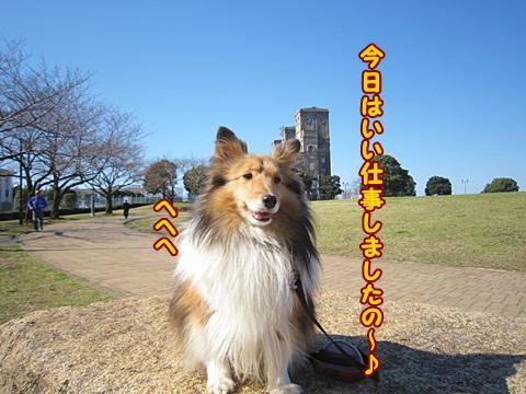 IMG_9840.jpg