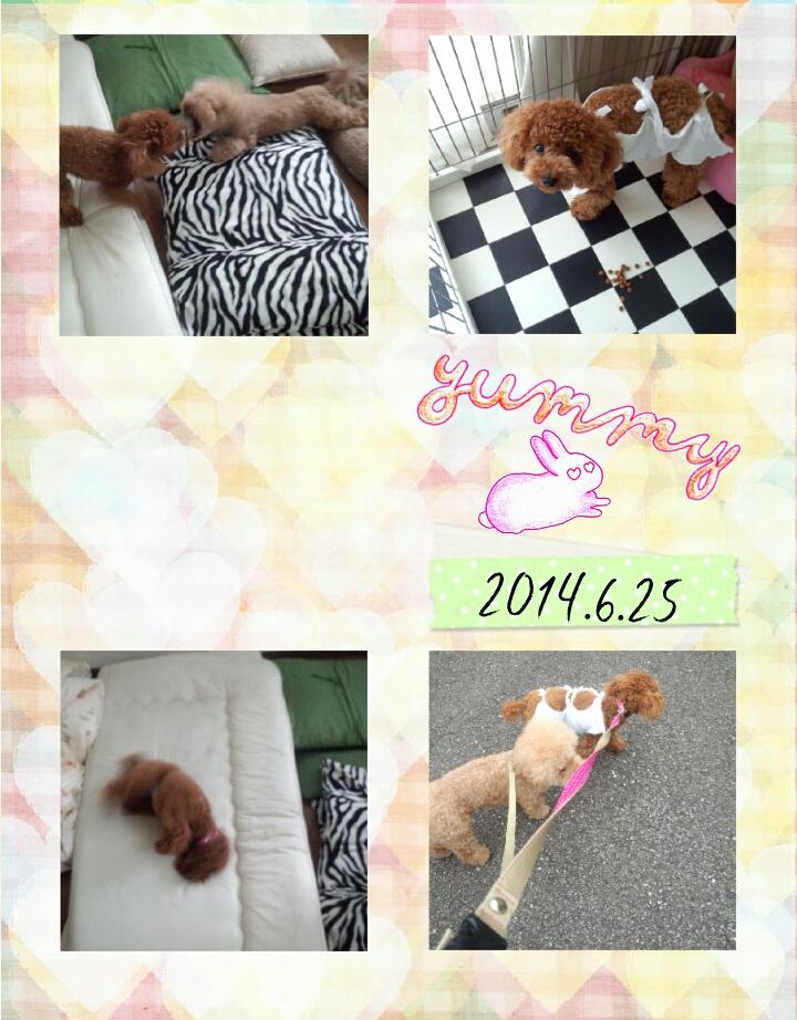 20140625_060854.jpg
