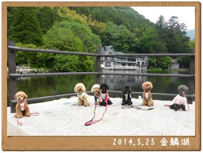 201405251.jpg