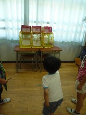 小学校祭り2014⑦ (2)