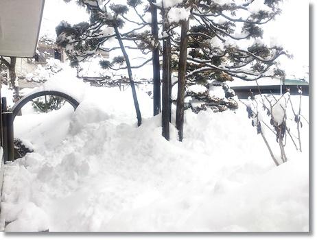 snow0215a.jpg