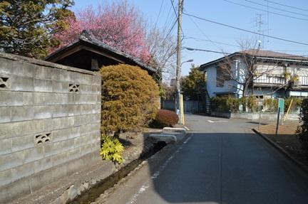 2014-02-01_101.jpg
