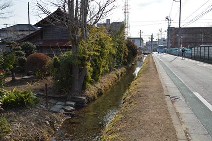 2014-02-01_16.jpg