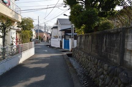 2014-02-01_173.jpg