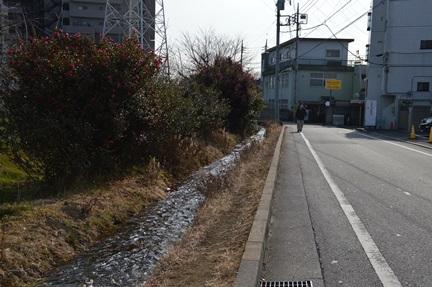 2014-02-01_20.jpg