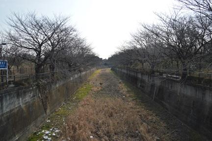 2014-02-01_32.jpg