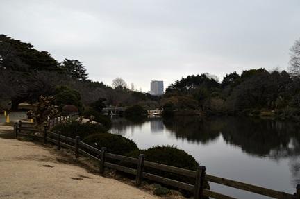 2014-02-23_19.jpg