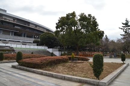 2014-02-23_61.jpg