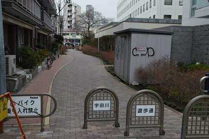 2014-03-14_135.jpg
