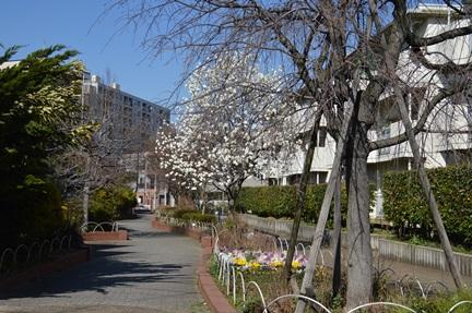 2014-03-22_105.jpg