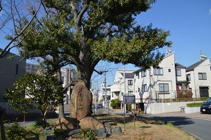 2014-03-22_107.jpg