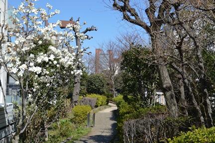2014-03-22_63.jpg