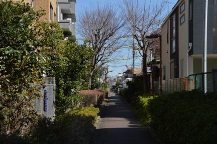 2014-03-22_77.jpg
