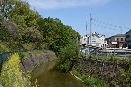 2014-04-27_124.jpg