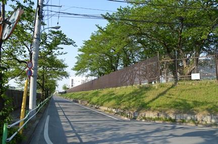 2014-04-27_191.jpg