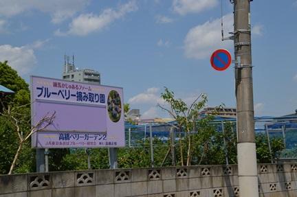 2014-05-02_113.jpg