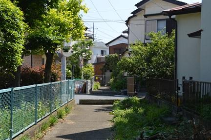 2014-05-02_17.jpg