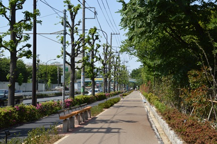 2014-05-10_102.jpg