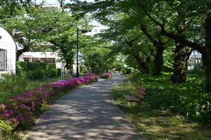2014-05-10_122.jpg