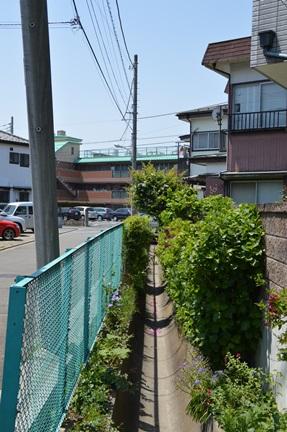 2014-05-10_8.jpg
