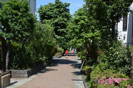 2014-05-17_93.jpg