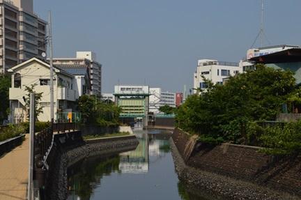2014-05-31_137.jpg