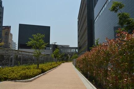 2014-05-31_48.jpg