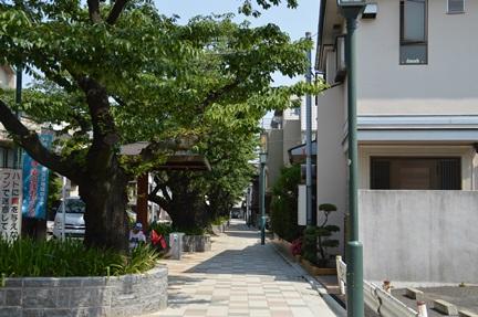 2014-05-31_76.jpg