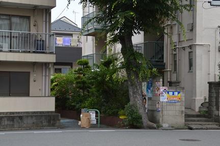 2014-06-21_30.jpg